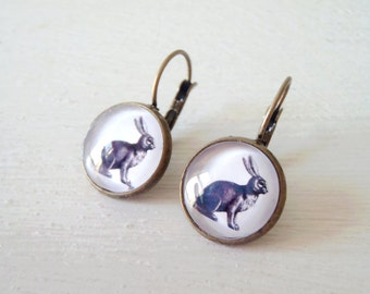 Bunny Rabbit Earrings vintage illustration