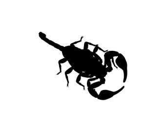 Scorpion Vinyl Decal -   Donation With Purchase - **Choose your donation organization by adding a note at checkout**