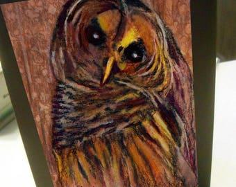 greeting card cute burrowing owl blank card