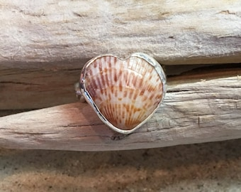 Fine Silver Braided Ring with SS Bezel Set Heart Shaped Cockleshell size 8