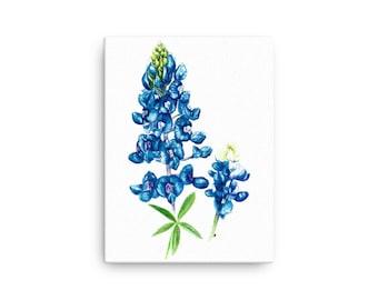 Texas Bluebonnet Canvas