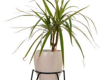 Plant Stand - Size S - Mid Century Hairpin Legs Wire Plant Stand