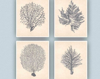 Sea fan Art, Nautical Art, Seafan coral prints, modern vintage inspired  by coral, kelp, gorgonian, seaweed, seashore prints,set of 4 prints