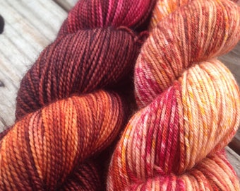 Chocolate Covered Chilis on merino/nylon sock yarn
