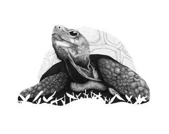 Tortoise/Turtle Pointillism Art Digital Download