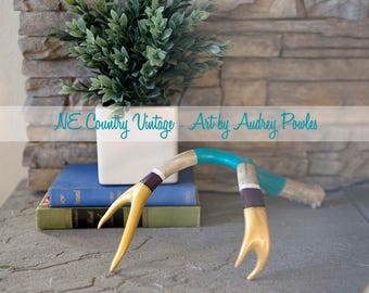 Hand Painted Antlers - Medium Mule Deer - Teal Plum and Gold with Black and White Accents