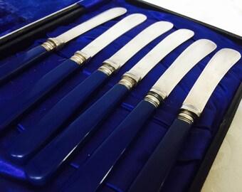 Antikes Box Set von sechs Königlich Königsblau Celluloid behandelt Käse Messer Tee Messer Sonderfarbe funktionsfähig leichte Patina markiert