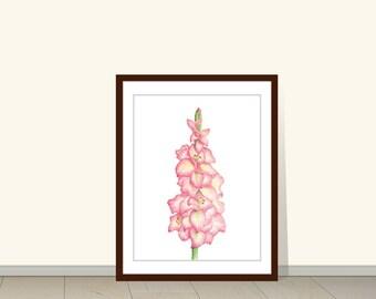 Gladiola Watercolor Giclee Print, Gladiola Plant Print, Watercolor Flowers, Floral, Decor, Wall Art, Botanical, Flower Print, Gladiolus