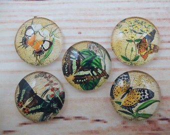 Butterfly Fridge Magnets, Glass Kitchen Magnets, Set of 5, Kitchen Decor, Hostess Gift, Housewarming Gift, Office Decor, Locker Magnet
