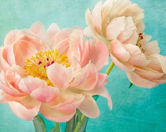 Peony Art, Floral Art Print, Coral Turquoise Wall Decor, Peony Print, Still Life Photography