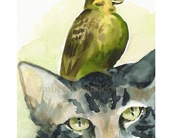 Tolérance - chat et oiseau Art
