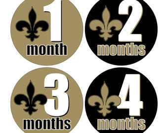 12 Monthly Baby Milestone Waterproof Glossy Stickers - Fleur de Lis - New Orleans Louisiana - Design M027-01