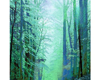 Forest fantasy, digital print, nature, scenery, modern art, abstract woodlands, digital art, fine art print, photomontage, 4 color ways
