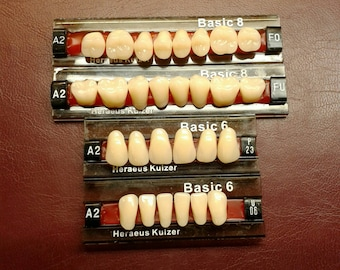 Full set of upper and lower large denture teeth, false teeth shade A2