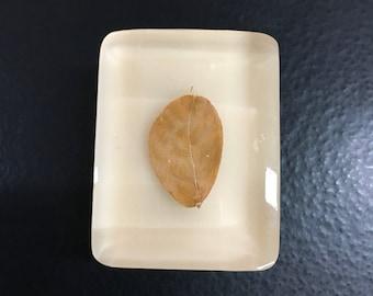 VINTAGE- Leaf - RARE - Retired Acrylic Block Rubber Stamp -