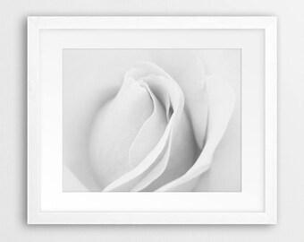 Flower Print, White Rose Wall Art, Flower Photo, Black & White Photography, Plant, Nature, White Grey Decor, Modern Wall Art, Printable Art
