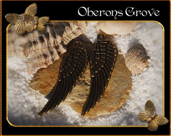 10 wing charms bronze 9x31mm
