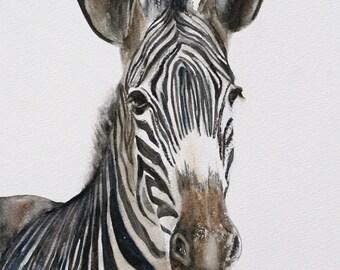 ORIGINAL painting watercolor painting original WATERCOLOR painting watercolor animal painting zebra painting art nursery art print of zebra