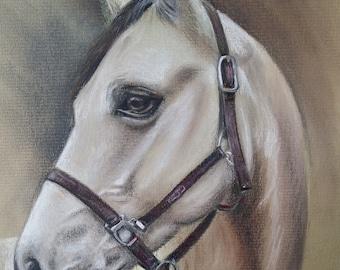 Horse portrait, pet portrait, custom portrait, dog portrait, cat portrait, pet painting
