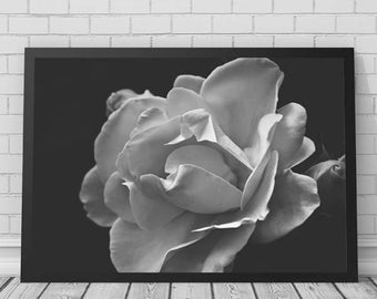 Black and White Rose Art Print, Rose, Rose Print, Flower Art, Flower Prints, Flowers, Printable Digital Download, Photography