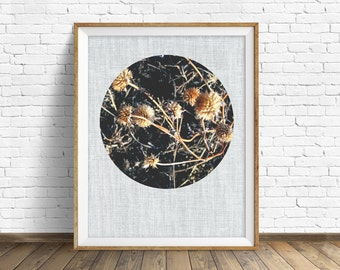 "nature photography, large art, large wall art, instant download, printable art, art print, farmhouse, decor, wall art - ""Dormant Thistles"""