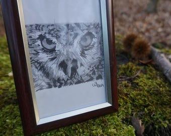Original owl drawing