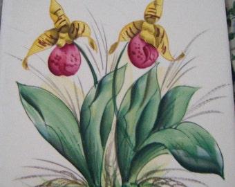 Beautiful Porcelain Trivet Tile Orchids Wall Hanging Vintage