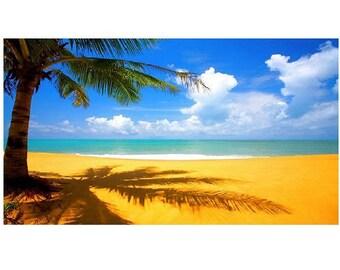 Summer Beach Scene Photo License Plate - LPO3486