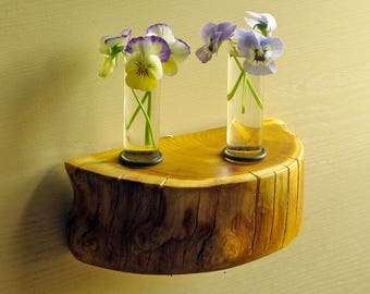 Rustic decor - Hanging or table top test tube vase - wood, trunk section