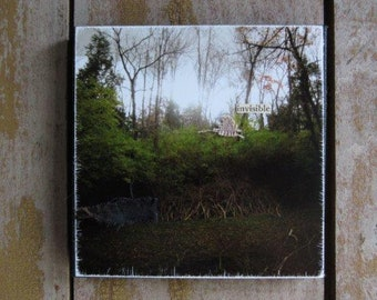 Invisible. Mixed Media Collage Assemblage Art, 4x4 Miniature Wall Hanging, Photography,Small Wall Decor,Rustic,Nature,Natural,Mysterious Art