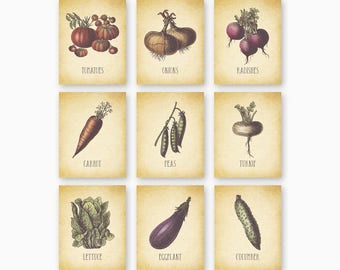 VEGETABLE WALL ART, Farmhouse Kitchen, Kitchen Printables, Country Kitchen, Rustic Kitchen, Vintage Kitchen, Set of 9, Instant Download