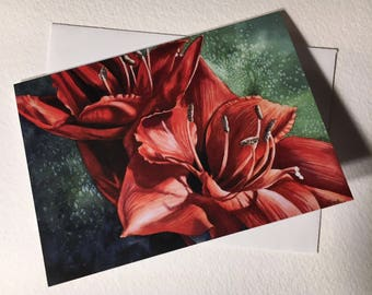 I'm Alive Red Amaryllis Note Card Set