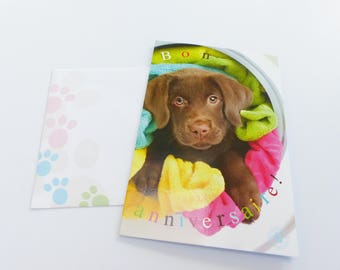 little dog puppy card folded birthday card with envelope