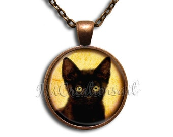 Black Cat Glass Dome Pendant or with Chain Link Necklace AN155