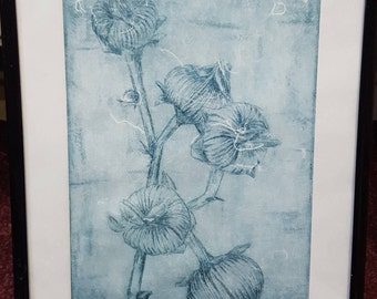 Dry-point Etching: Dried Hollyhock Seed Head