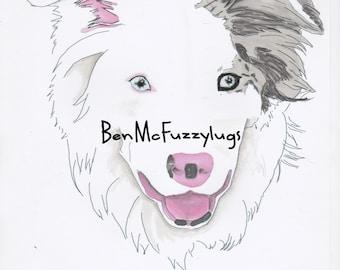 Custom dog drawing - example Blue Merle Border Collie Dog Portrait . Digital file. Personalised Border Collie Art