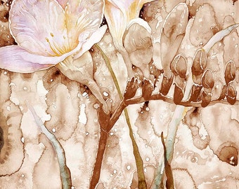 Flower, Freesia, Watercolor, Pigment Print, Limited Edition, Floral,Botanical, Black and White, Sepia Toned, Browns,Pale rose,Pale Yellow,
