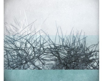 Ben  hiver (Abstract Photography - Fine Art Print - Frozen trees - Country - Winter - Frost - Flake- Ice - Monochromatic - Light Blue)