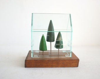 Terrarium greenhouse structure with miniature pine trees - small glass-look acrylic house - geometric structure - clear architecture