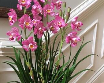 cymbidium orchids polymer clay flower, polymer clay orchid flower, clay Flower,cold porcelain clay flower,clay ,flower arrangements