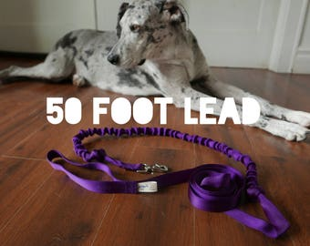 50 FT LONG LEAD: Leashes made for Dogs with Bungee in 5 colors