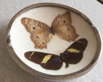 Pressed/butterflies/Sweden/handmade