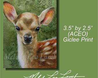 Print Deer Fawn Melody Lea Lamb ACEO Print