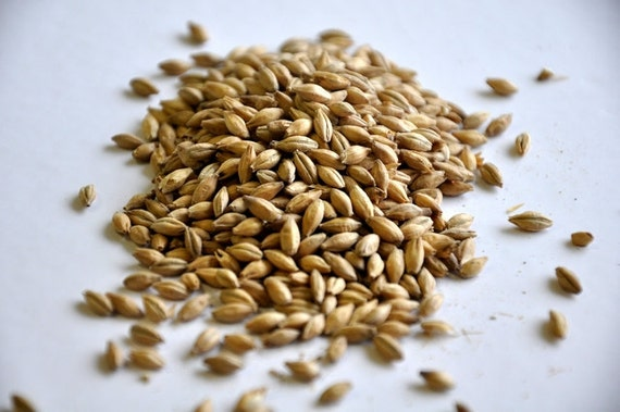 All Natural Raw ORGANIC 2 Row Brewers Grains For Home Brewing 1 Pound
