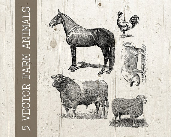 Farm Animals Collage Sheet 5 Vintage Antique Digital Animal Illustration Vector Graphic