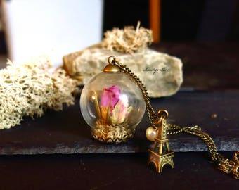 Terrarium Necklace - A rose for you in Paris