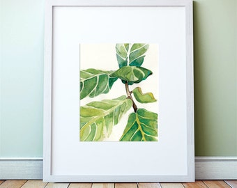 Fiddle leaf fig Watercolor: Art Print, of Fiddle leaf fig painting, Abstract botanical print