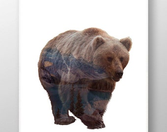 Nothern Bear Front