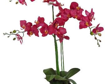 "35"" Fuchsia Phalaenopsis Orchid arrangement in garden pot"