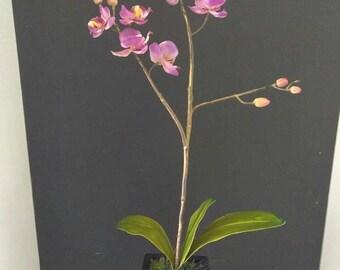 Artificial phalaenopsis orchid plant. Silk flower flower arrangements